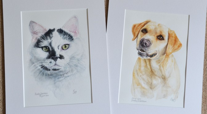 dog-cat-portraits