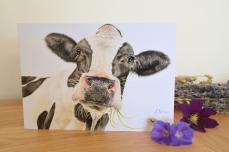 Cow card 2