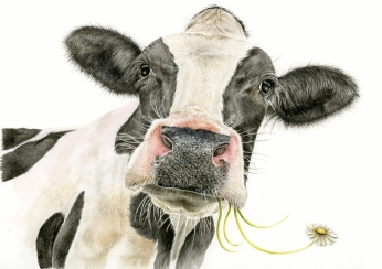 Black-and-white-cow-painting