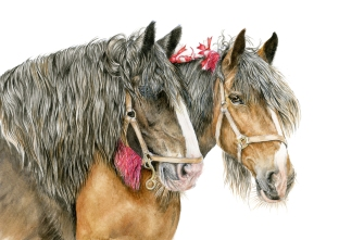 Horses Picture 3