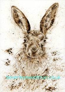 Mad March Hare FB