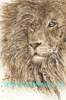 lionwalnutinkfb