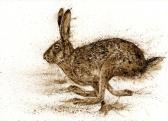 running-brown-hare